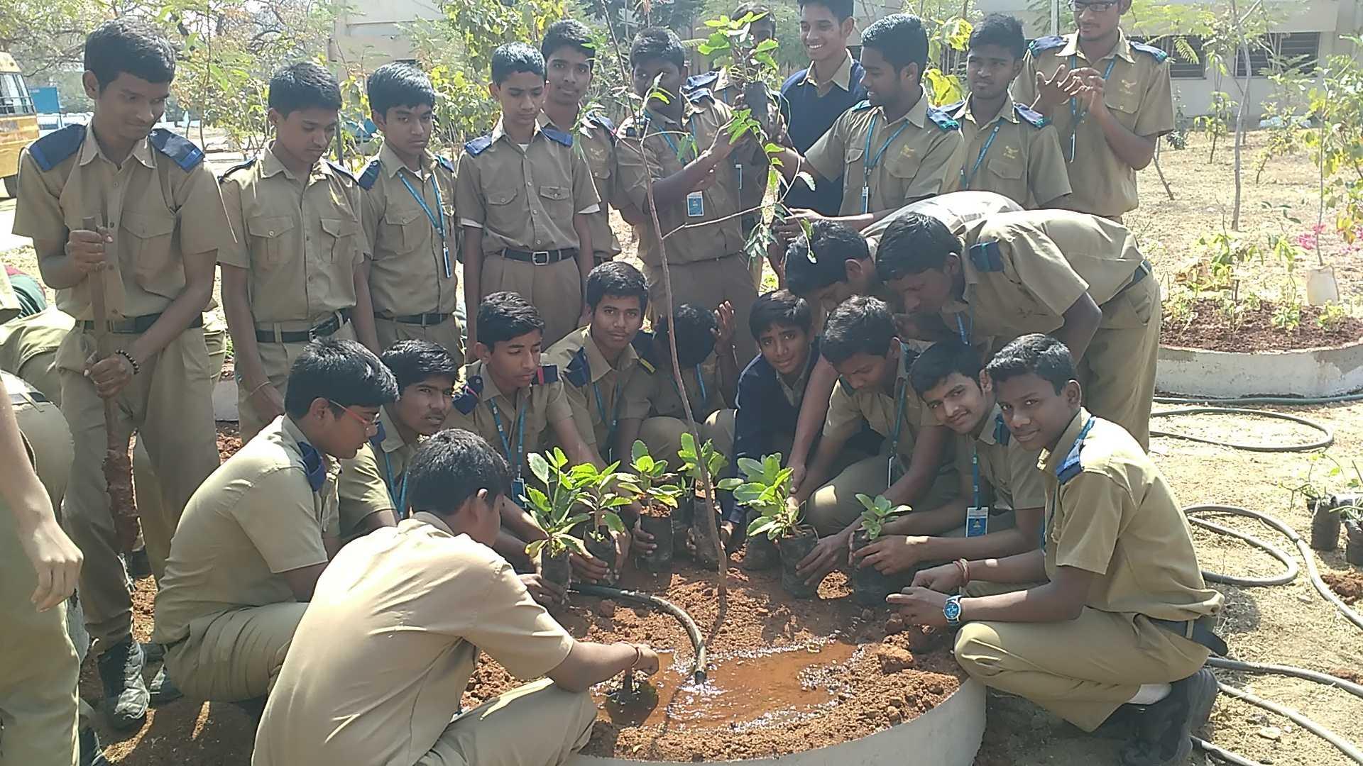 Telangana State Medicinal Plants Board